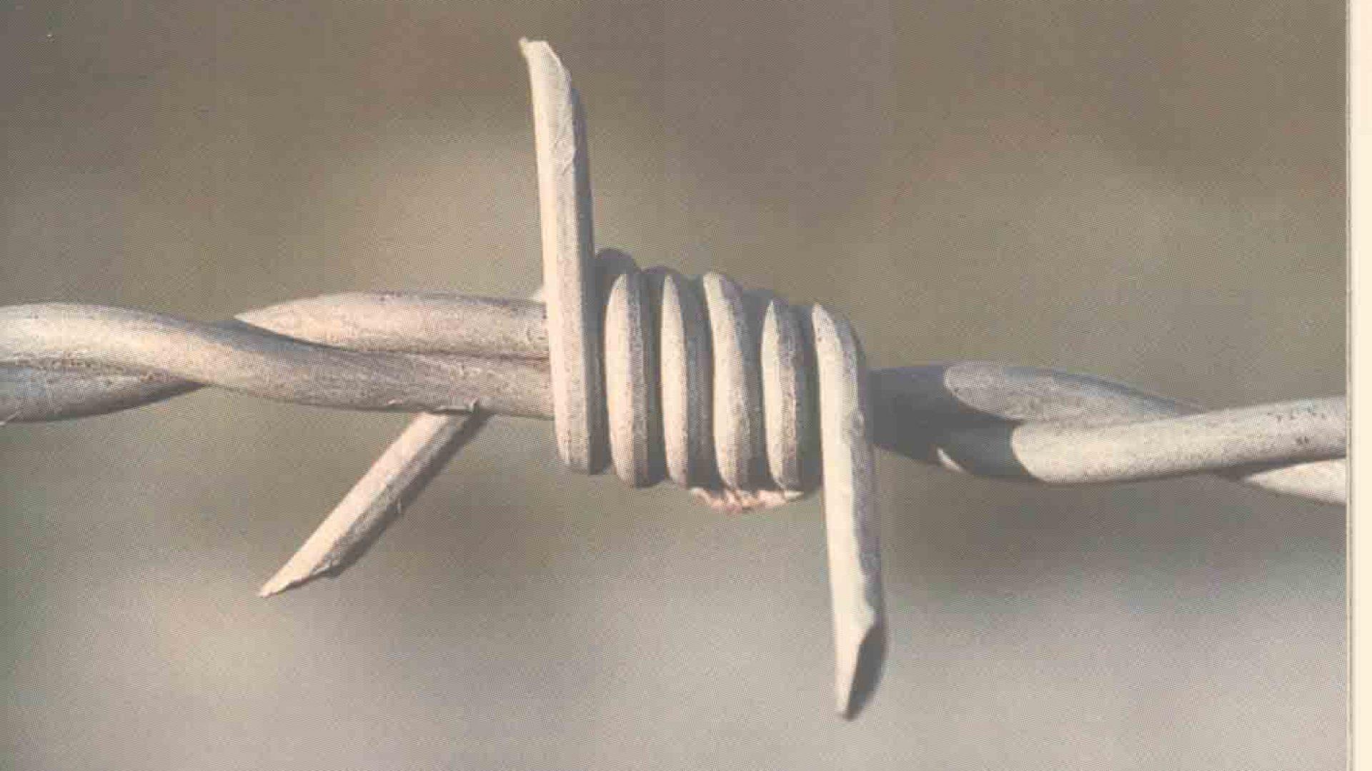 (2005.) VIS Mlekadžije – Nemoj Stati